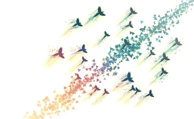 volar no solo para pájaros