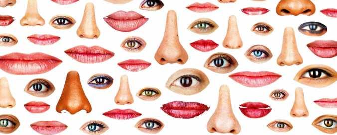 ojos y narices